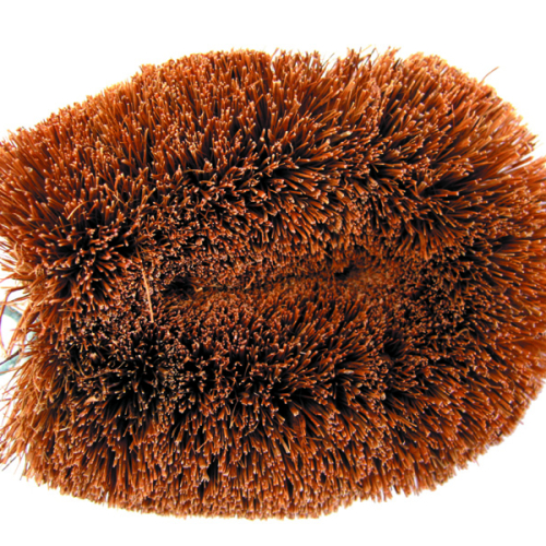 Cocoa vegetable brush