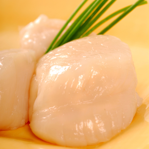 SCALLOPS, LARGE, NO ROE