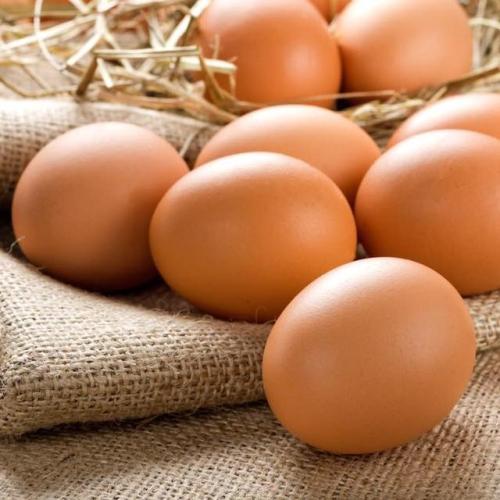 Old Dairy Eggs – 6 free range