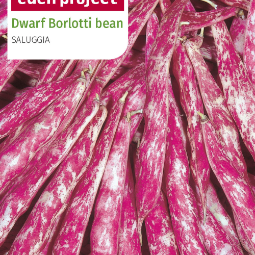 Franchi - Eden Project Borlotto Bean of Saluggia *Endangered variety*