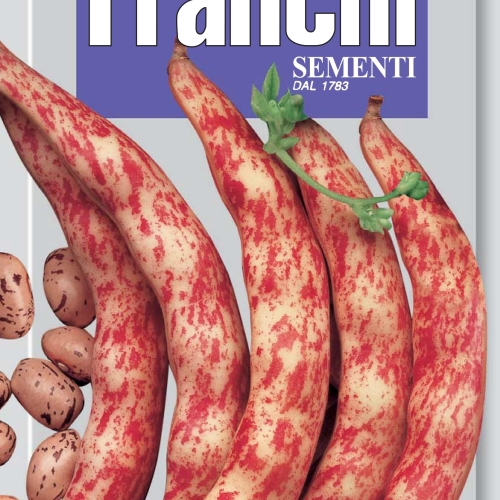 Franchi - Borlotto bean Lamon from the Veneto