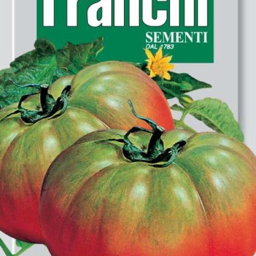 Franchi - Tomato Pantano of Rome
