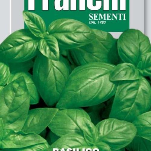 Franchi Basil Classico Italiano