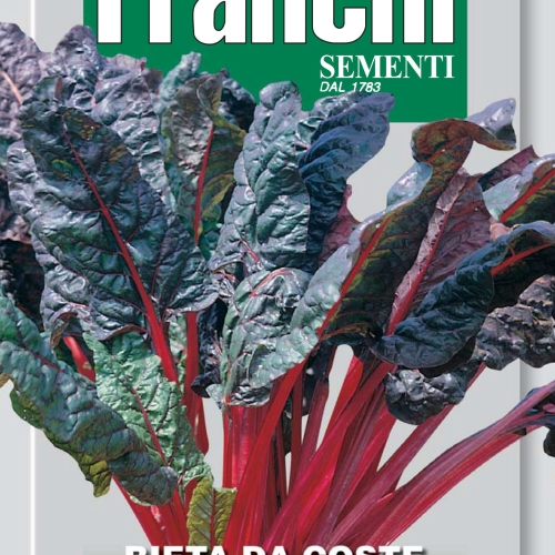 Franchi Rhubarb swiss chard