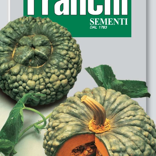 Franchi - Pumpkin Marina of Chioggia *Italy's oldest variety*