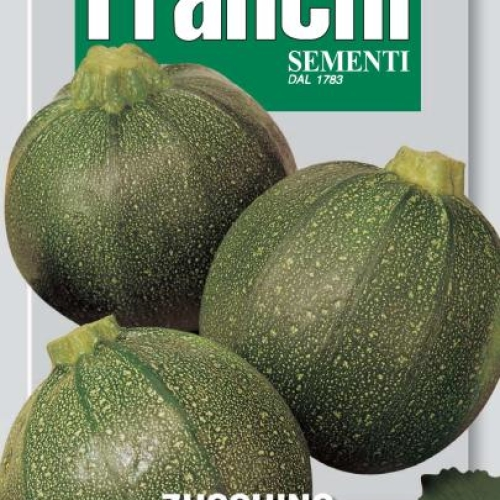Franchi - Courgette round of Piacenza