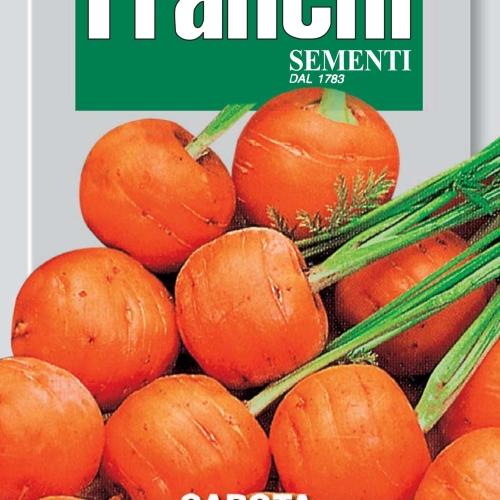 Franchi - Carrot Parisier Market