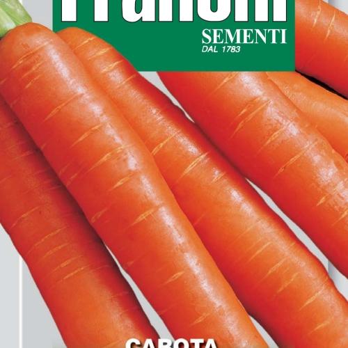 Franchi - Carrot Nantese of Chioggia