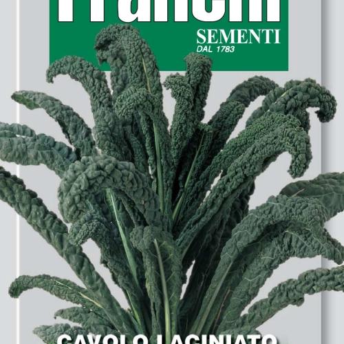 Franchi Cavolo Nero Kale of Tuscany