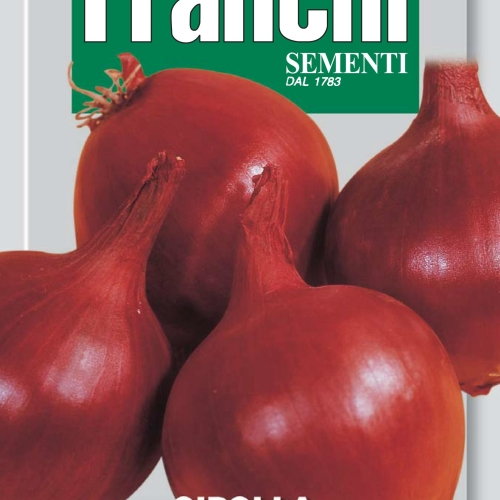 Franchi - Red Onion of Tropea Tonda
