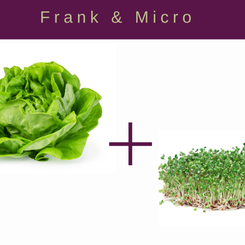 Frank Lettuce and Microgreen