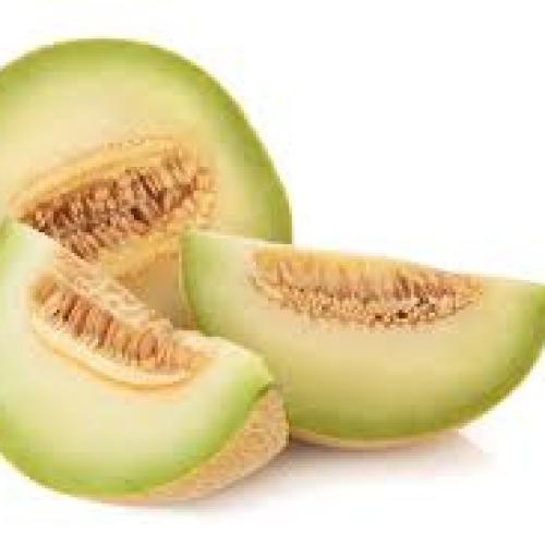 Galia melon /t/m