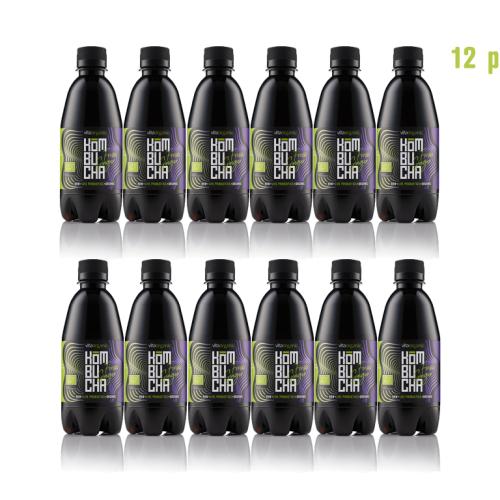 Vita Organic Fresh Ginger Kombucha Pack (12 x 330 ml Bottles)