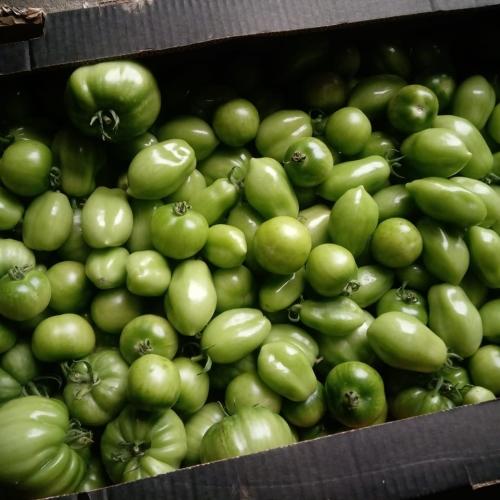 Green Tomato Chutney 300g