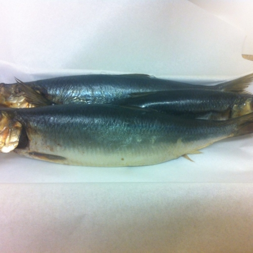Bloater - Oak Smoked Whole Herring