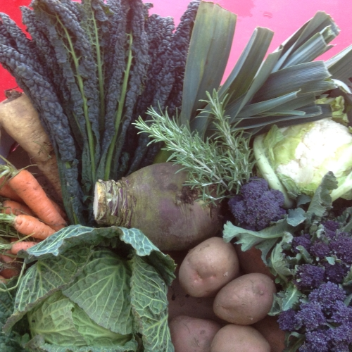Home grown vegetable box