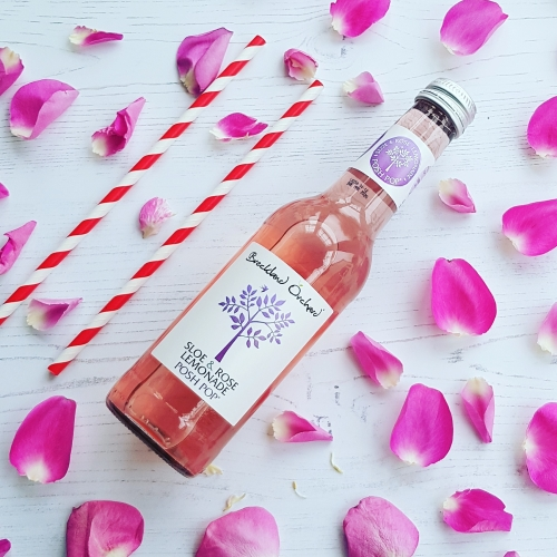 Posh Pop Gin Lover's Mixer Collection by Breckland Orchard