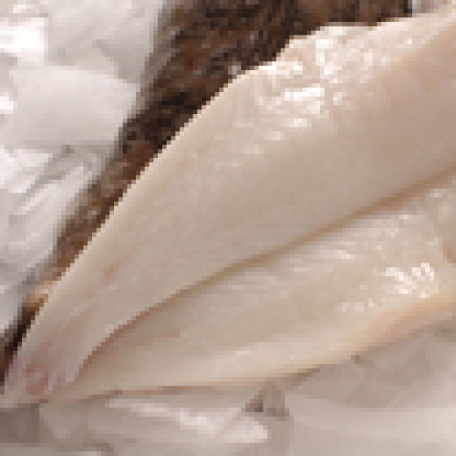 MONKFISH - FILLET