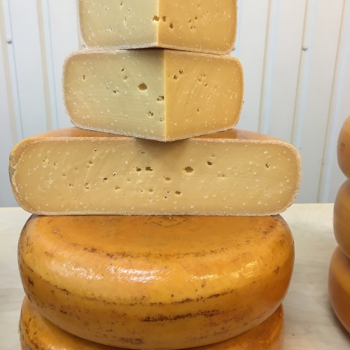 Boerenkaas Gouda 2 years old