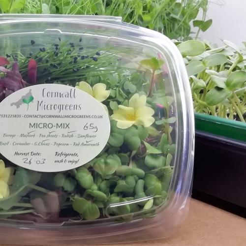 Microgreens salad box