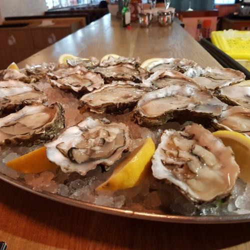 OYSTERS (COLCHESTER)