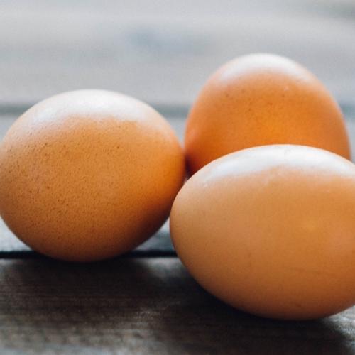 Organic Eggs (Large)