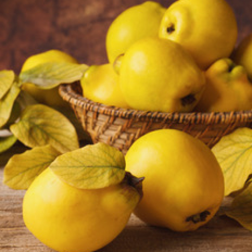 5kg tray of Quinces