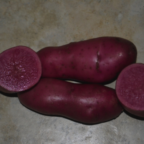 Red Emmalie Potatoes