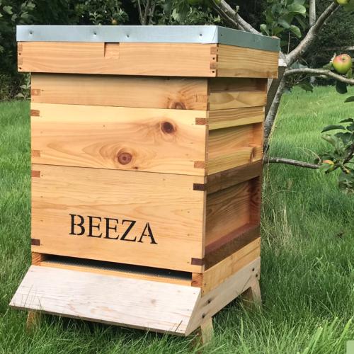 Adopt a Hive Scheme