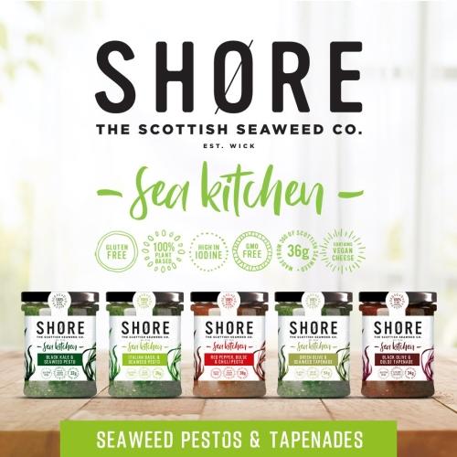 SHORE – Pesto Collection