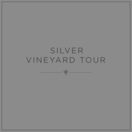 Silver Vineyard Tour Gift Voucher