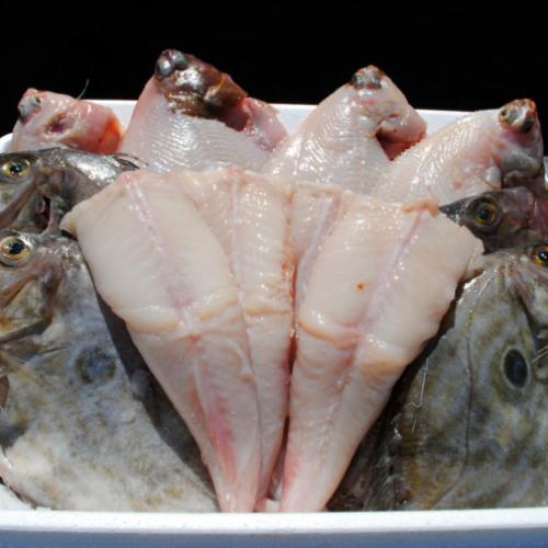 The South Coast Prime Fish Box (£5.25 per portion)