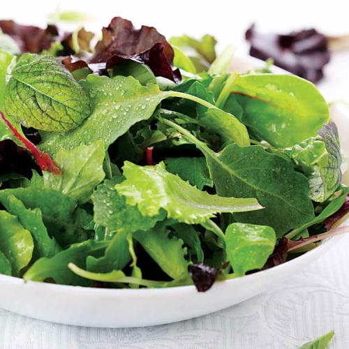 Organic Mixed Salad Catering Box