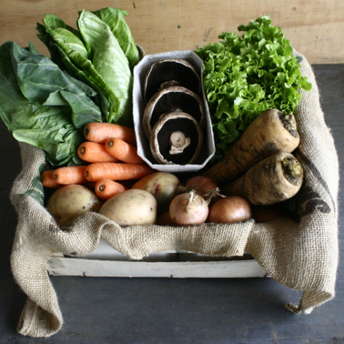 Xtreme Organic Veg Box