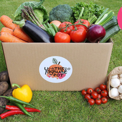 Veg Lovers Box
