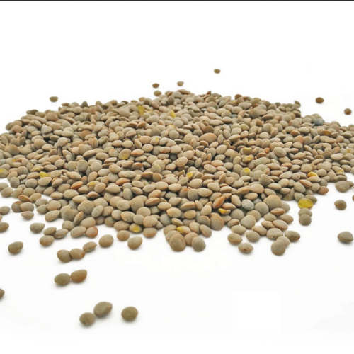 HODMEDOD'S Whole Olive Green Lentils