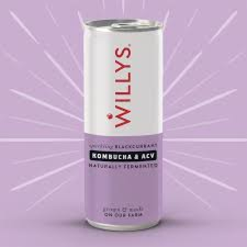 Willy's-Spkling Blackcurrant,Kombucha&ACV Drink